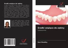 Bookcover of Środki wiążące do zębiny