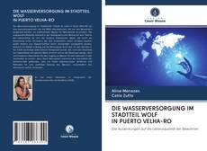Bookcover of DIE WASSERVERSORGUNG IM STADTTEIL WOLF IN PUERTO VELHA-RO