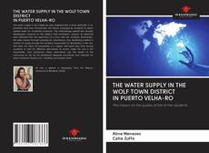Bookcover of THE WATER SUPPLY IN THE WOLF TOWN DISTRICT IN PUERTO VELHA-RO