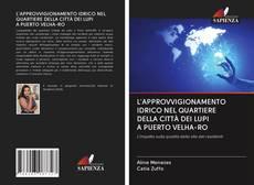 Обложка L'APPROVVIGIONAMENTO IDRICO NEL QUARTIERE DELLA CITTÀ DEI LUPI A PUERTO VELHA-RO