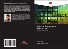 Antenne à résonateur diélectrique kitap kapağı