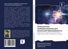 Bookcover of Электронное приборостроение для начальной проницаемости
