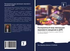 Bookcover of Панорамный вид эволюции звукового вещания в ДРК