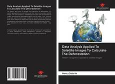 Buchcover von Data Analysis Applied To Satellite Images To Calculate The Deforestation