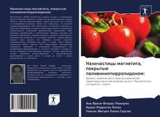 Portada del libro de Наночастицы магнетита, покрытые поливинилпирролидоном: