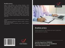 Bookcover of Analiza pracy