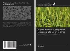Buchcover von Mapeo molecular del gen de tolerancia a la sal en el arroz