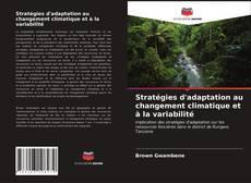 Couverture de Stratégies d'adaptation au changement climatique et à la variabilité