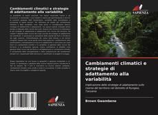 Couverture de Cambiamenti climatici e strategie di adattamento alla variabilità