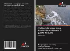 Bookcover of Effetto delle acque grigie domestiche sul sistema di qualità del suolo