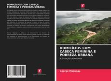 Portada del libro de DOMICÍLIOS COM CABEÇA FEMININA E POBREZA URBANA