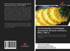 Bookcover of Acclimatization of pineapple glass plants (Ananas comosus L. Merr.) MD-2
