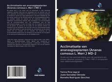Copertina di Acclimatisatie van ananasglasplanten (Ananas comosus L. Merr.) MD-2