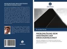 Copertina di PROBLEMLÖSUNG BEIM VERSTÄNDNIS DER DREIECKSÄHNLICHKEIT