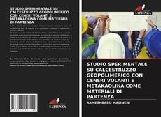 Couverture de STUDIO SPERIMENTALE SU CALCESTRUZZO GEOPOLIMERICO CON CENERI VOLANTI E METAKAOLINA COME MATERIALI DI PARTENZA