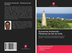 Borítókép a  Economia Ambiental - Pântanos do Sal da Índia - hoz