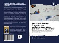 Секьюритизация: Финансовая стабильность после финансового кризиса? kitap kapağı