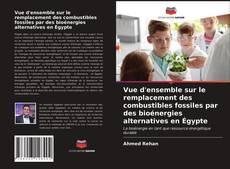 Vue d'ensemble sur le remplacement des combustibles fossiles par des bioénergies alternatives en Égypte kitap kapağı