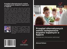 Buchcover von Przegląd alternatywnych metod zastępowania biopaliw kopalnych w Egipcie