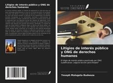 Couverture de Litigios de interés público y ONG de derechos humanos