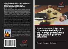 Couverture de Spory sądowe dotyczące interesu publicznego i organizacje pozarządowe zajmujące się prawami człowieka