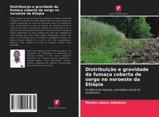 Bookcover of Distribuição e gravidade da fumaça coberta de sorgo no noroeste da Etiópia