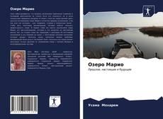 Озеро Марио kitap kapağı