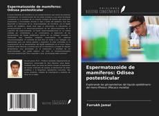 Portada del libro de Espermatozoide de mamíferos: Odisea postesticular