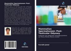 Bookcover of Mammalian Spermatozoon: Post-Testicular Odyssey