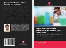 Borítókép a  Espermatozóide de mamífero: Odisséia pós-testicular - hoz