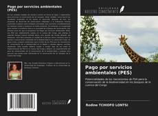 Pago por servicios ambientales (PES) kitap kapağı
