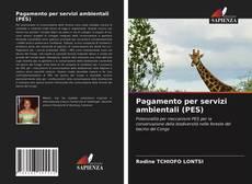 Pagamento per servizi ambientali (PES) kitap kapağı