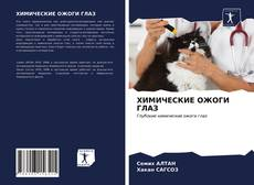ХИМИЧЕСКИЕ ОЖОГИ ГЛАЗ kitap kapağı