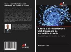 Bookcover of Cause e caratteristiche del drenaggio dei cervelli in Etiopia