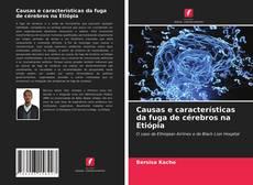 Bookcover of Causas e características da fuga de cérebros na Etiópia