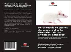 Bookcover of Morphométrie du cœur et des poumons chez les descendants de rats atteints de leptospirose
