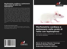 Bookcover of Morfometria cardiaca e polmonare nella prole di ratto con leptospirosi