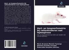 Bookcover of Hart- en longmorfometrie bij rattenkinderen met leptospirose