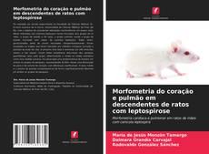 Bookcover of Morfometria do coração e pulmão em descendentes de ratos com leptospirose