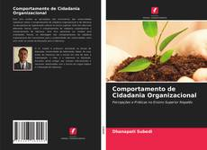 Capa do livro de Comportamento de Cidadania Organizacional