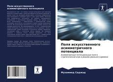 Bookcover of Поля искусственного асимметричного потенциала