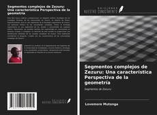 Borítókép a  Segmentos complejos de Zezuru: Una característica Perspectiva de la geometría - hoz