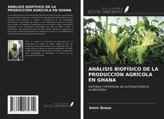 Copertina di ANÁLISIS BIOFÍSICO DE LA PRODUCCIÓN AGRÍCOLA EN GHANA