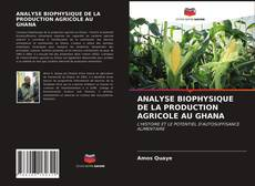 Bookcover of ANALYSE BIOPHYSIQUE DE LA PRODUCTION AGRICOLE AU GHANA