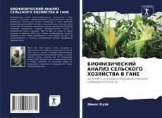 Bookcover of БИОФИЗИЧЕСКИЙ АНАЛИЗ СЕЛЬСКОХОЗЯЙСТВЕННОГО ПРОИЗВОДСТВА В ГАНЕ