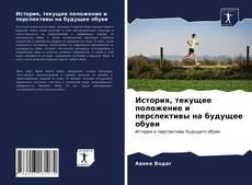 Bookcover of История, текущее положение и перспективы на будущее обуви