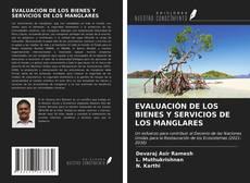 EVALUACIÓN DE LOS BIENES Y SERVICIOS DE LOS MANGLARES的封面