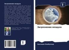 Buchcover von Загрязнение воздуха
