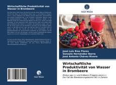Buchcover von Wirtschaftliche Produktivität von Wasser in Brombeere
