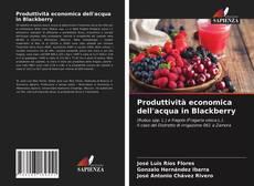 Bookcover of Produttività economica dell'acqua in Blackberry